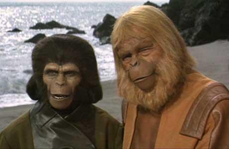 Um mundo de pontas, habitado por Macacos?