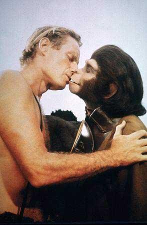Afinal, somos todos Macacos?