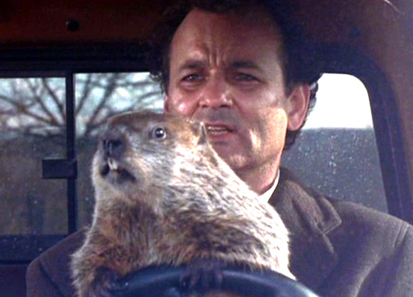 gal-groundhog-day-murray
